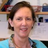 Professor Adrienne M Flanagan